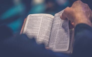 Adult Bible Study on Exodus